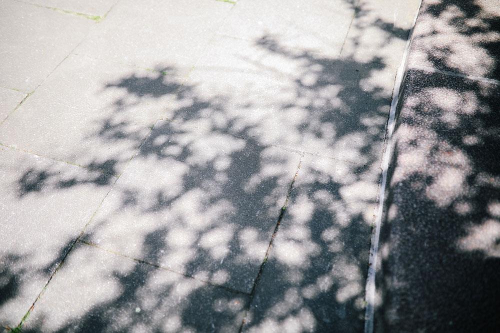 LM Fotografie -10